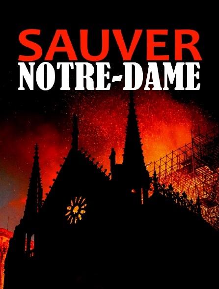 Záchrana katedrály Notre Dame online cz