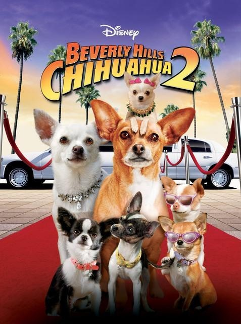 Čivava z Beverly Hills 2 online film cz sk