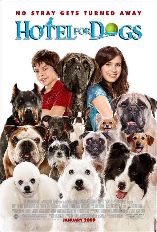 Hotel pro psy Hotel pre psov online film
